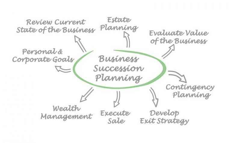 https://walshbanks.com/wp-content/uploads/business-succession-planning-outlne.jpg