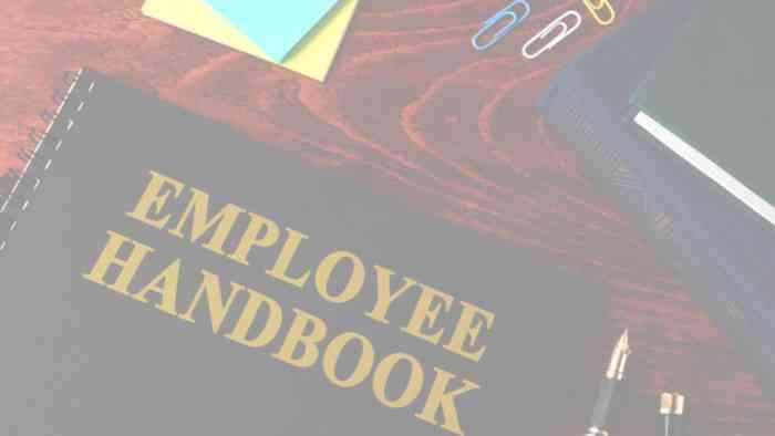 https://walshbanks.com/wp-content/uploads/well-written-employee-handbook.jpg